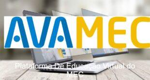 Avamec Cursos Online EAD Plataforma do MEC